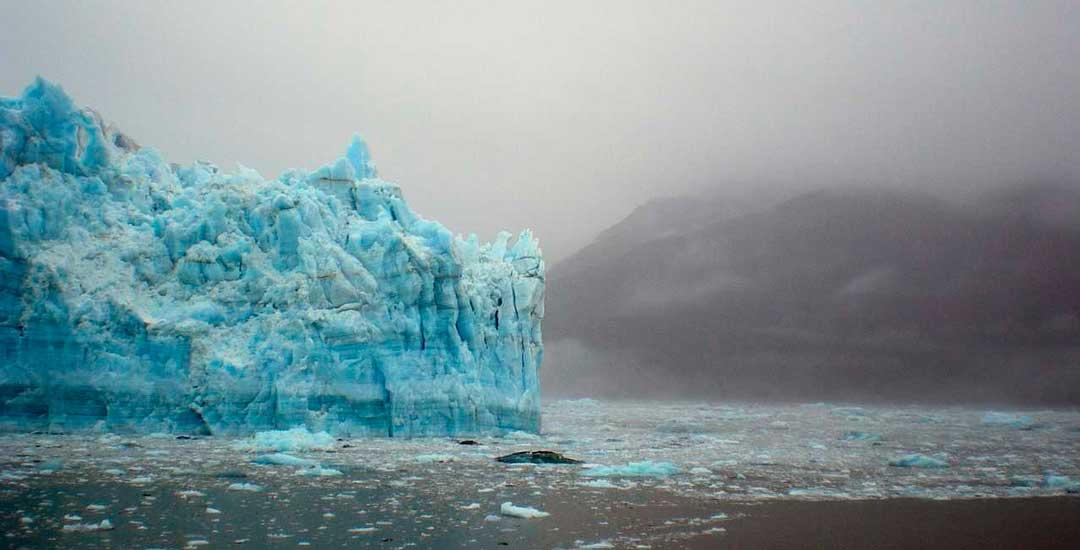 el inicio del cambio climático en el S XIX propagó un aumento de la temperatura global que afecta a los polos.